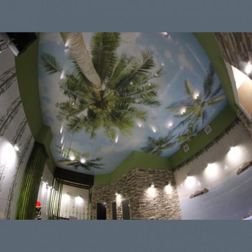 Глянцевый натяжной потолок Pongs с фотопечатью 1м2