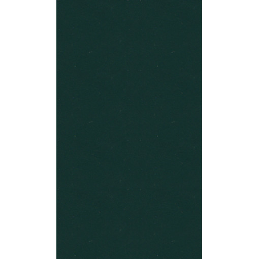 Лаковый цветной CTN L19