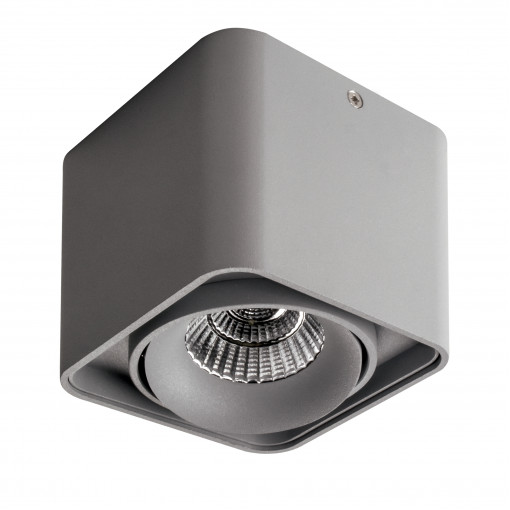052119-IP65 Светильник MONOCCO LED10W 600LM 30G СЕРЫЙ 4000K (в комплекте)