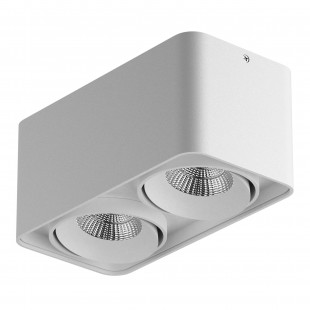 052326-IP65 Светильник MONOCCO LED 2х10W 1200LM 30G БЕЛЫЙ 3000K (в комплекте)