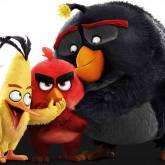 фотообои тематические-angry birds