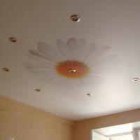 натяжной потолок с фото печатью ромашка