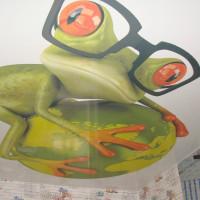 натяжной потолок с фото печатью лягушка